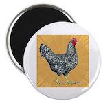 "Dominique Chicken Hen 2.25"" Magnet (100 pack)"