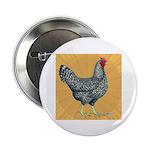 """Dominique Chicken Hen 2.25"""" Button"""