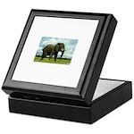 Eli's Keepsake Box