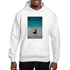 Sea Lion Silhouette Hoodie