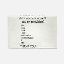 Cute Dirty words Rectangle Magnet