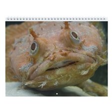 Saltwater Oddities Wall Calendar