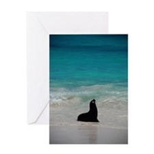 Sea Lion Silhouette Greeting Card
