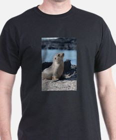 Sea Lion 3 T-Shirt
