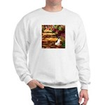 Path / Rat Terrier Sweatshirt