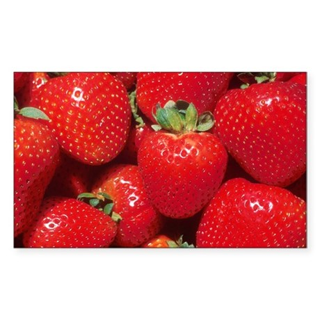 Strawberries Rectangle Sticker