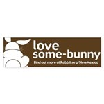 New Mexico Bumper Sticker (50 pk)
