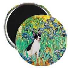 Irises / Rat Terrier Magnet