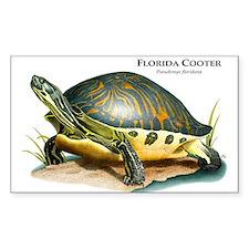 Florida Cooter Rectangle Decal