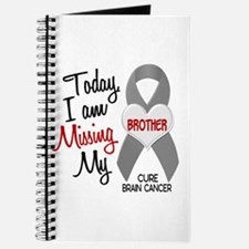Missing 1 Brother BRAIN CANCER Journal