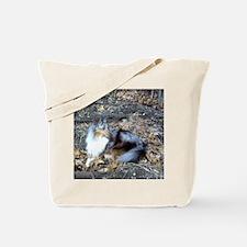 Blue Merle in the Leaves Tote Bag