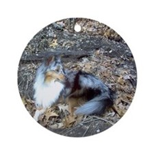 Blue Merle in the Leaves Ornament (Round)
