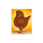 Schietti Modena Pigeon Rectangle Sticker 50 pk)