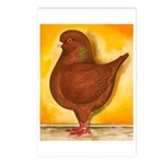 Schietti Modena Pigeon Postcards (Package of 8)