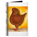 Schietti Modena Pigeon Journal