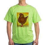 Schietti Modena Pigeon Green T-Shirt