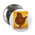 "Schietti Modena Pigeon 2.25"" Button (100 pack"