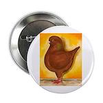 """Schietti Modena Pigeon 2.25"""" Button"""