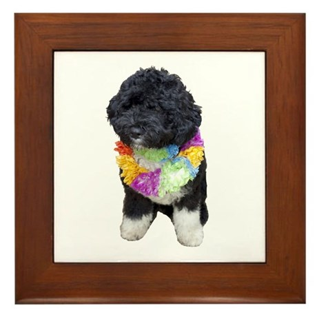 First Dog Bo Framed Tile