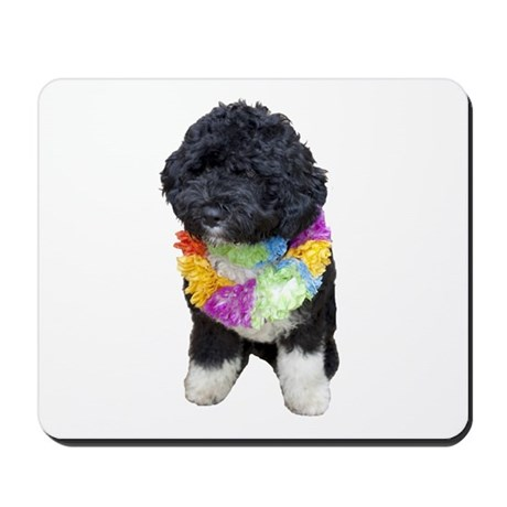 First Dog Bo Mousepad