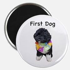 First Dog Bo Magnet
