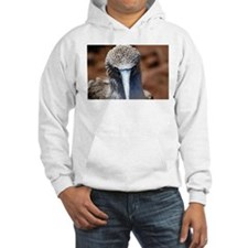 Blue Footed Boobie Close-Up Hoodie