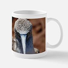 Blue Footed Boobie Close-Up Mug