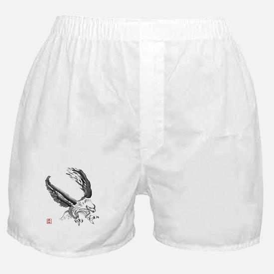American Eagle Sumi-e Boxer Shorts