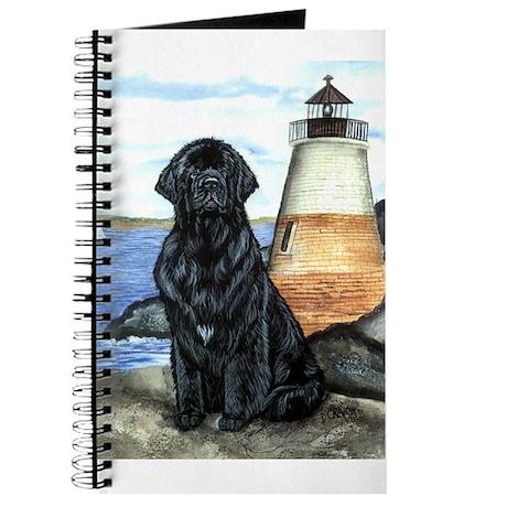 Newfoundland Lighthouse Journal