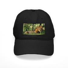 """Big African Lion"" Baseball Cap"