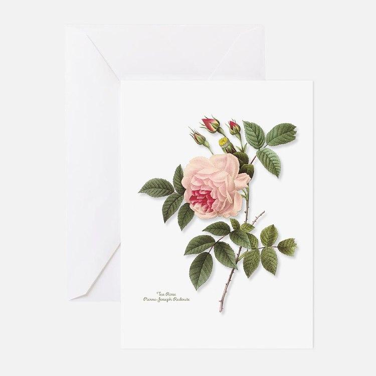 Tea Rose NoteCards (Pk of 10)