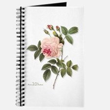 Tea Rose Journal