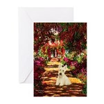Path / Scottie (w) Greeting Cards (Pk of 20)