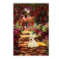 Path / Scottie (w) Postcards (Package of 8)