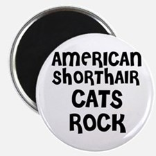 AMERICAN SHORTHAIR CATS ROCK Magnet