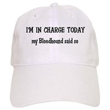 I'm in Charge Bloodhound Hat