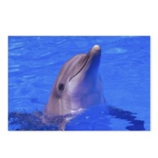 """Friendly Dolphin"" Postcards (Package of 8)"