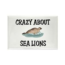 Crazy About Sea Lions Rectangle Magnet
