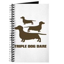 triple dog dare christmas story Journal