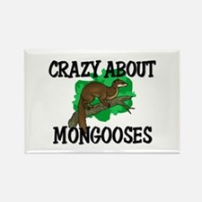 Crazy About Mongooses Rectangle Magnet
