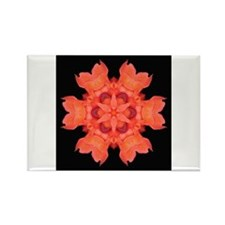 Canna Lily I Rectangle Magnet