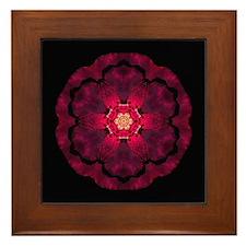 Beach Rose II Framed Tile