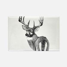 Deer Rectangle Magnet (100 pack)