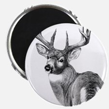 "Deer 2.25"" Magnet (100 pack)"
