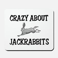 Crazy About Jackrabbits Mousepad