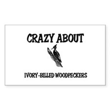 Crazy About Ivory-Billed Woodpeckers Decal