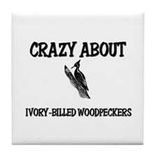 Crazy About Ivory-Billed Woodpeckers Tile Coaster