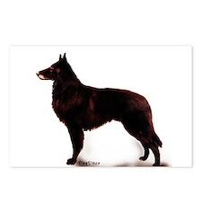 Belgian sheepdog portrait Postcards (Package of 8)
