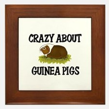 Crazy About Guinea Pigs Framed Tile