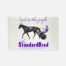 Bred in the Purple Rectangle Magnet